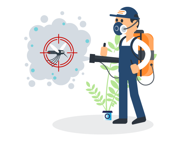 Professional Pest Control Benowa